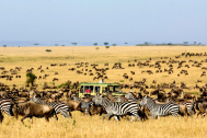 02-Kenya-and-Tanzania_Fotor.jpg